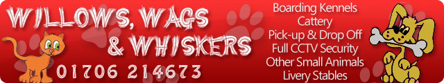 Advertising banner for Willows and Wags kennel and cattery